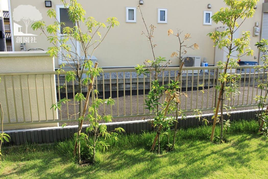 高崎市 植栽