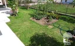 藤岡市 芝生 家庭菜園