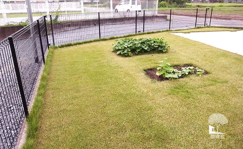 芝生 工事 高崎市 家庭菜園