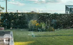 安中市 天然芝 散水器
