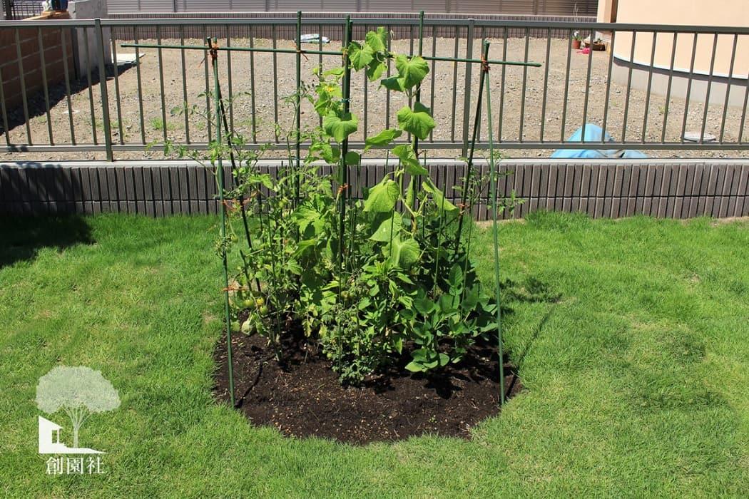 前橋市 家庭菜園