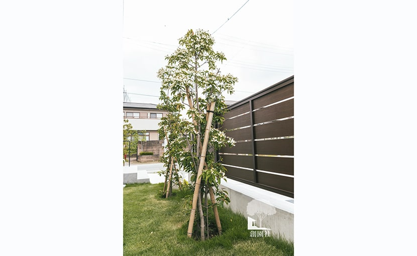 群馬県前橋市 新築外構 植栽
