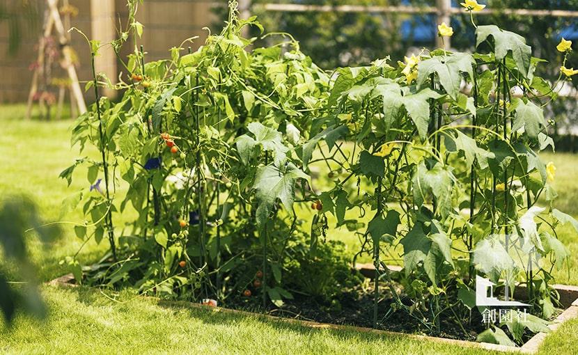 群馬県 高崎市 新築外構 家庭菜園